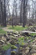 View in woods - forground is rock-lined stream with wooden plank over it, Background is trail leading into woods